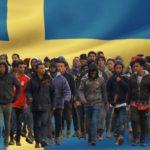 Do Švédka přijeli uprchlíci lékaři, bohužel s padělanými univerzitními diplomy